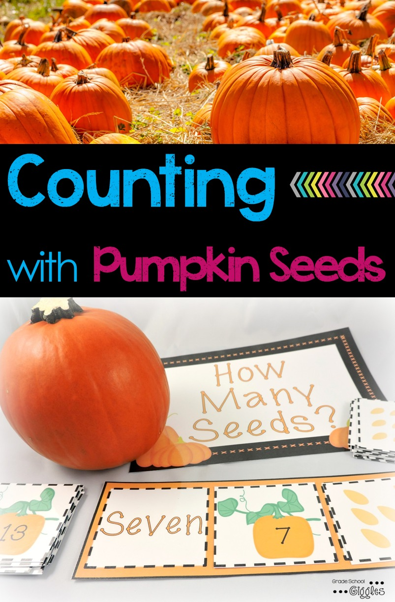 Check Out This Pumpkin Seed Counting Freebie